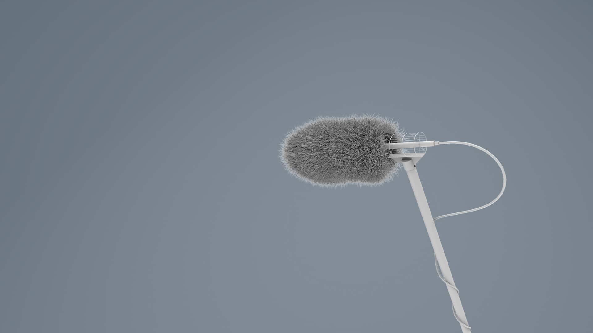 audio-in-presa-diretta-direct-recording-speakeraggio-milano